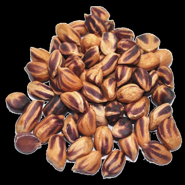 Bio wilde Erdnüsse